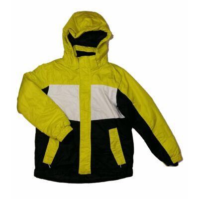 Sárga-fekete télidzseki (152)
