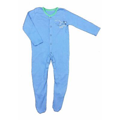 Kék repülős rugi (86)